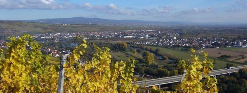 Naheweinberge
