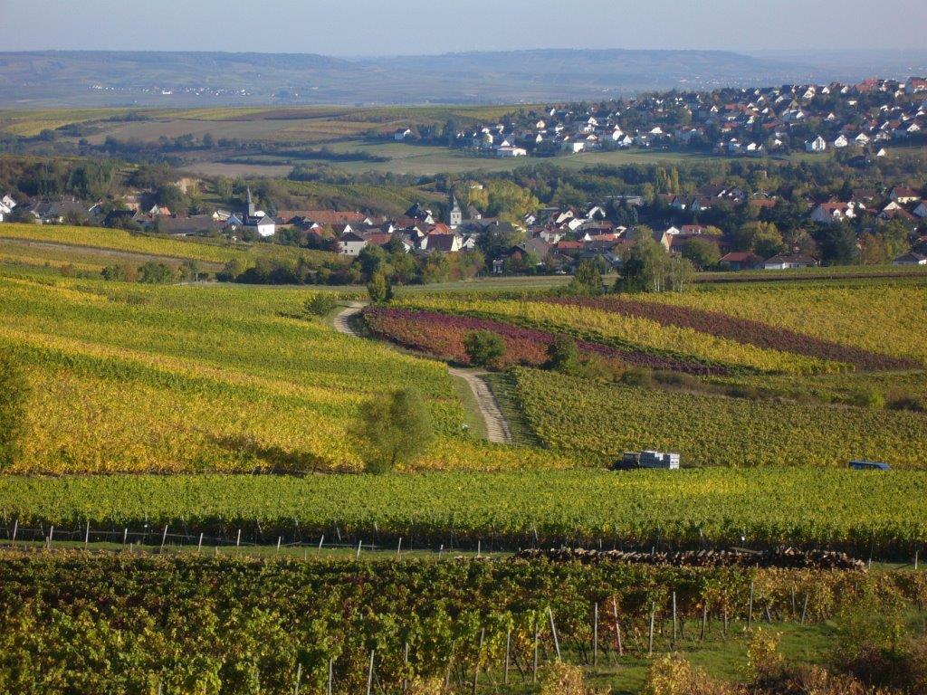 Romantisches Trollbachtal Burg-Layen