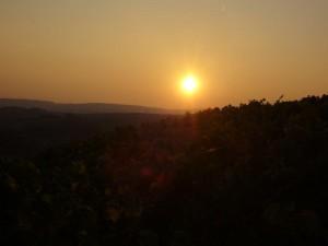 Sonnenuntergang Burg Layen