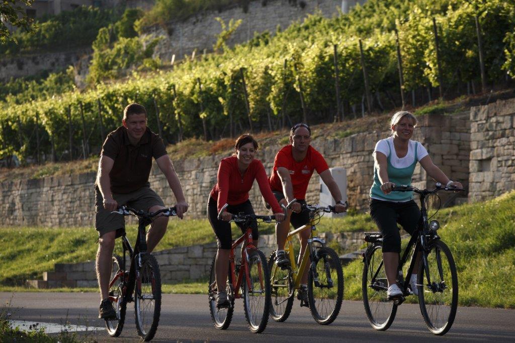 Urlaub im Weingut mit Radfahren am Weinberg