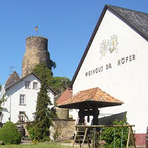 Weingut Dr.Höfer Burg Layen