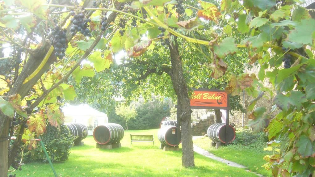 Weingut Höfer Weingenuss